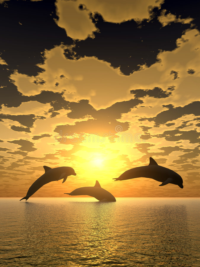 Free Dolphin Yellow Sunset Royalty Free Stock Photos - 2014458