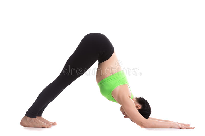 Dolphin Yoga Pose stock images
