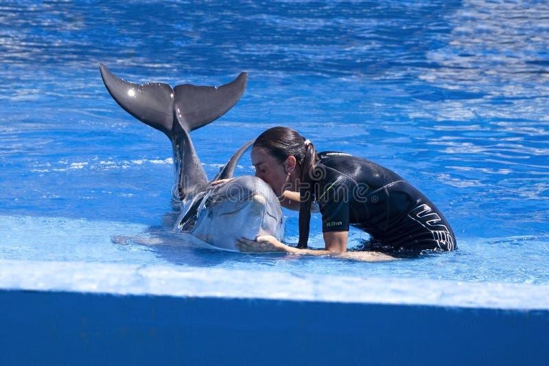 Dolphinarium, инструктор целуя тренера дельфина морского млекопитающегося стоковая фотография