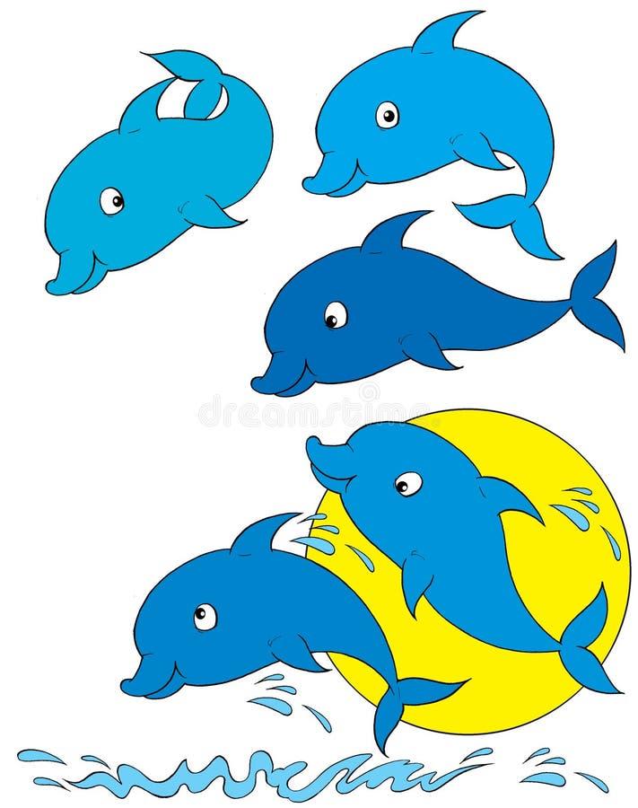 Dolphins vector illustration