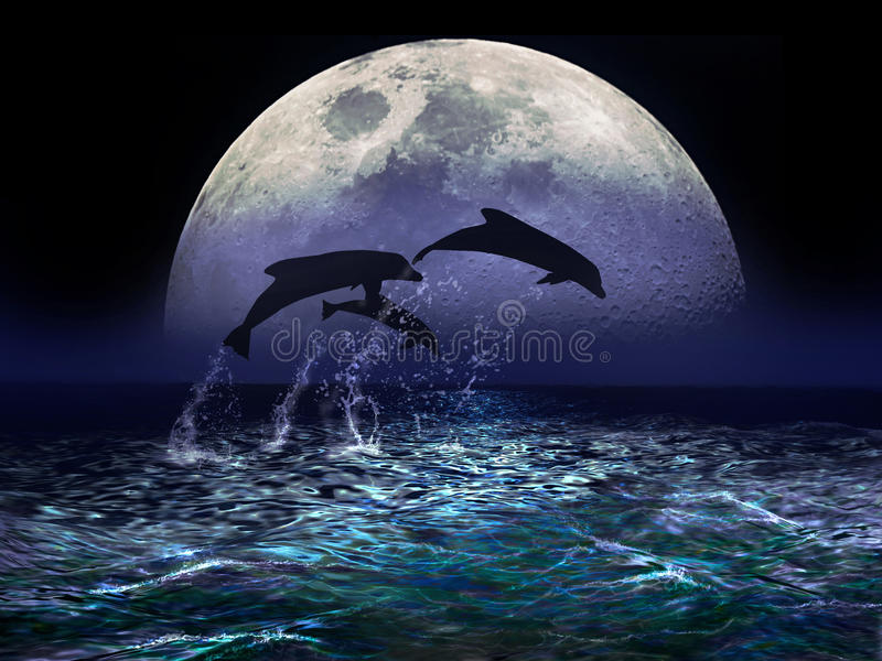 Dolphins and Moon stock illustration
