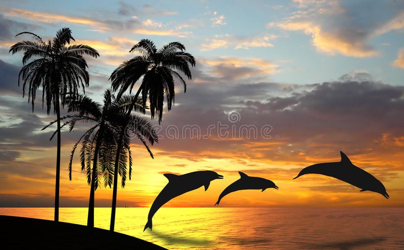 Dolphins near Hawaii vector illustration