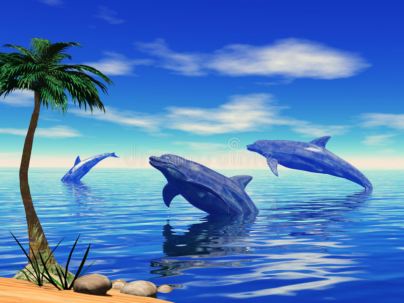 Dolphins playing vector illustration