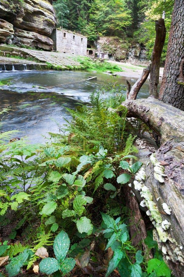 Dolsky watermill na Kamenice rzece, Jetrichovice region, czech Szwajcaria, republika czech zdjęcia royalty free