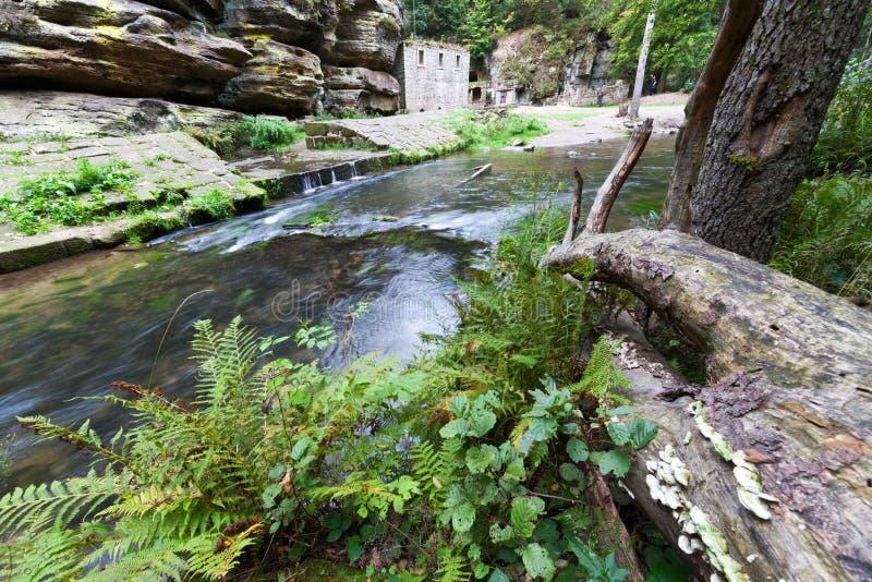 Dolsky watermill na Kamenice rzece, Jetrichovice region, czech Szwajcaria, republika czech zdjęcie royalty free