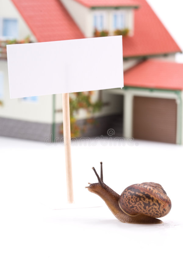 dom ślimak miniatury ogrodniczy fotografia royalty free
