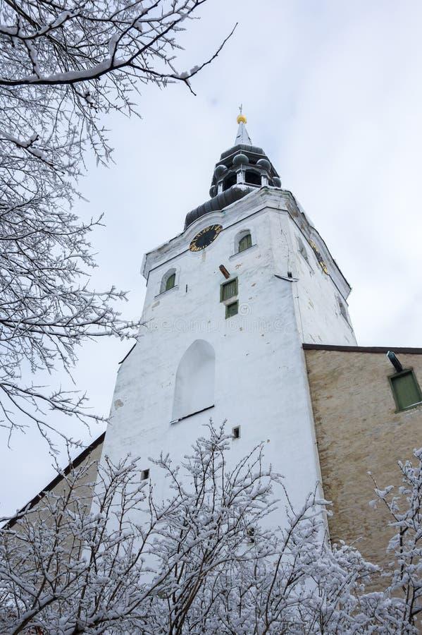 Dom Cathedral de Tallinn fotografía de archivo