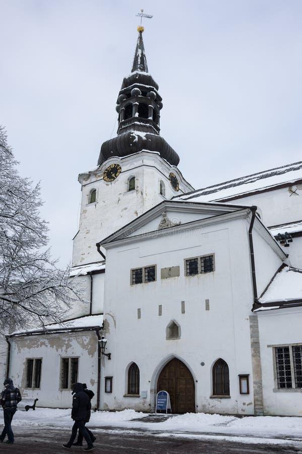 Dom Cathedral de Tallinn imagenes de archivo
