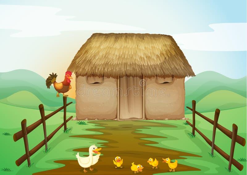 Dom i kaczki ilustracji