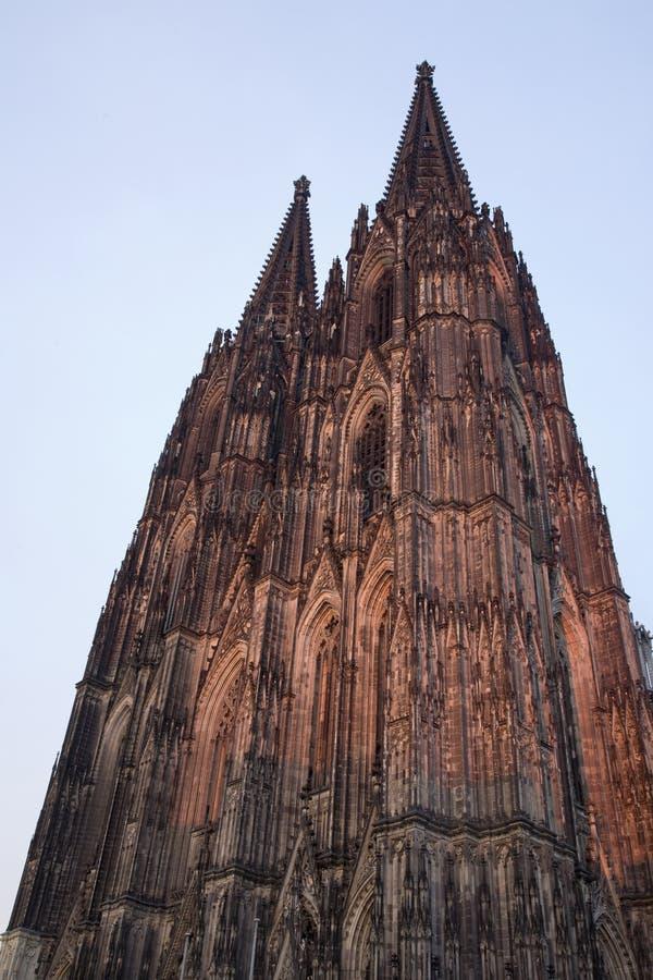 Dom in Keulen bij zonsondergang stock afbeelding