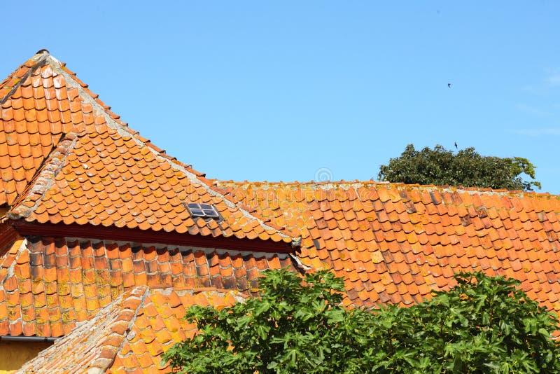 Dom na Christiansoe wyspie Bornholm Dani zdjęcie royalty free