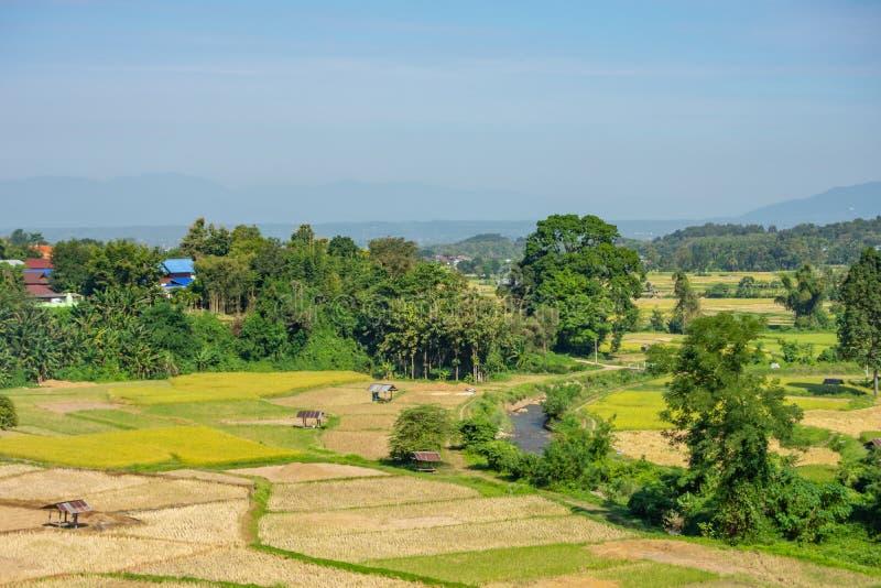 Dom na wsi na Zielonych ryżowego irlandczyka polach i będzie wkrótce do s fotografia royalty free