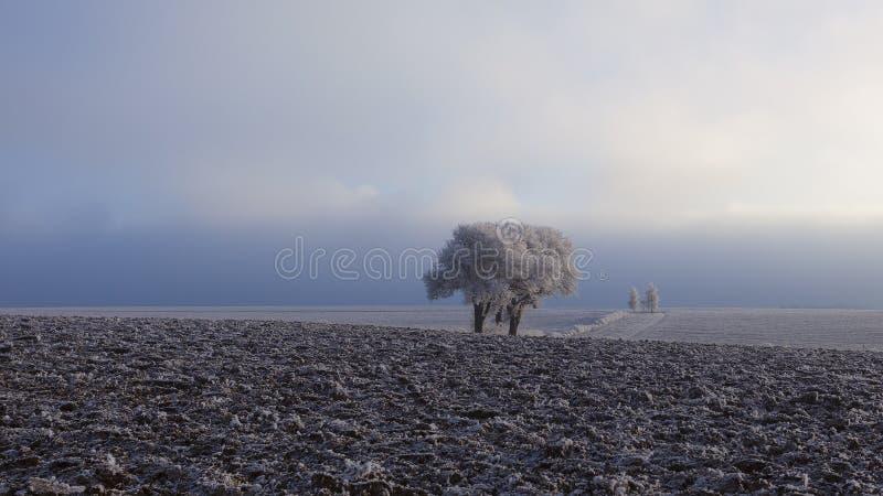 dom na wsi zima fotografia stock