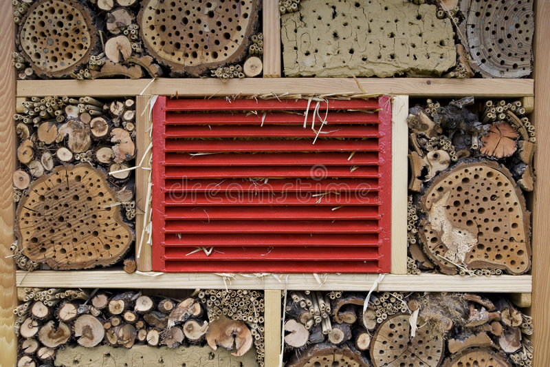 dom pszczółka zdjęcie stock