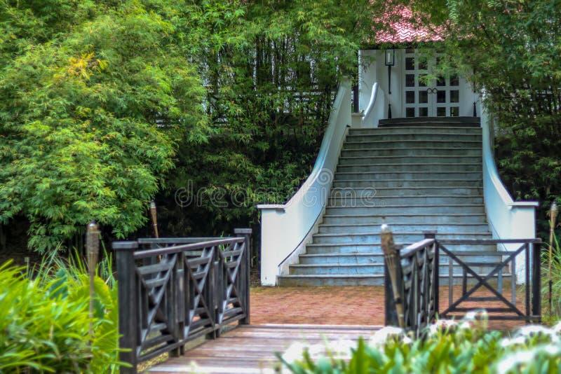 Dom w lesie z schody fotografia royalty free