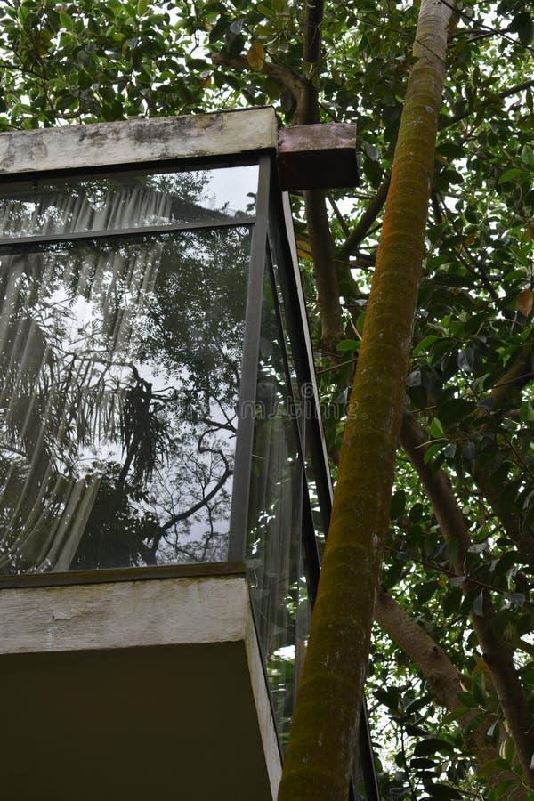 Dom w São Paulo Lina Bo Bardi zdjęcie royalty free