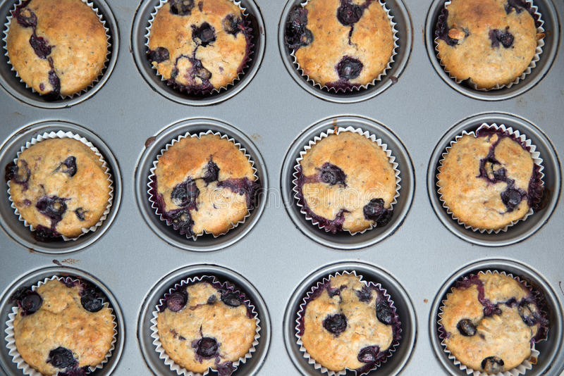 Dom zrobił czarnych jagod Muffins zdjęcie stock