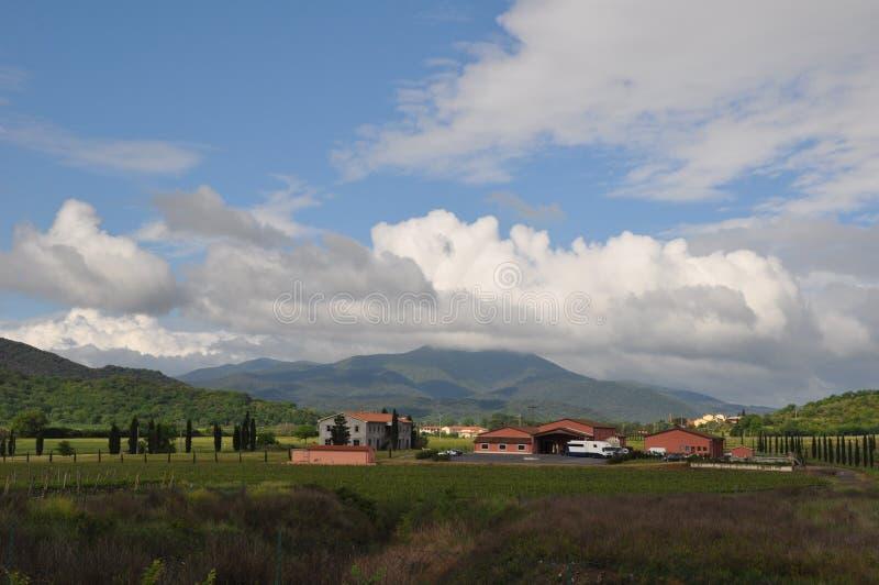 Domaine de vin en Toscane photo stock