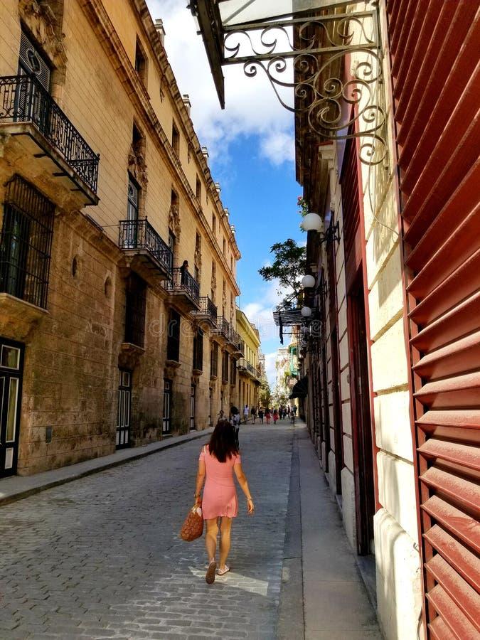 Domandandosi sulle vie di Avana immagine stock