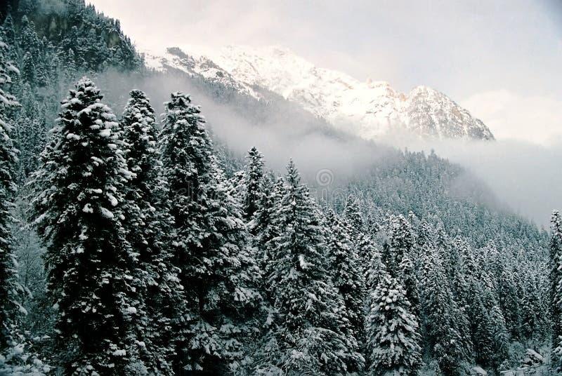 Dombai.Winter. royalty free stock image