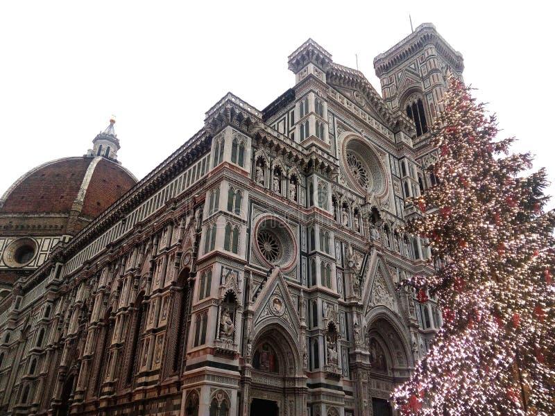 Dome of Florence and Christmas tree. Christmas tree in front of the dome of Florence royalty free stock photo