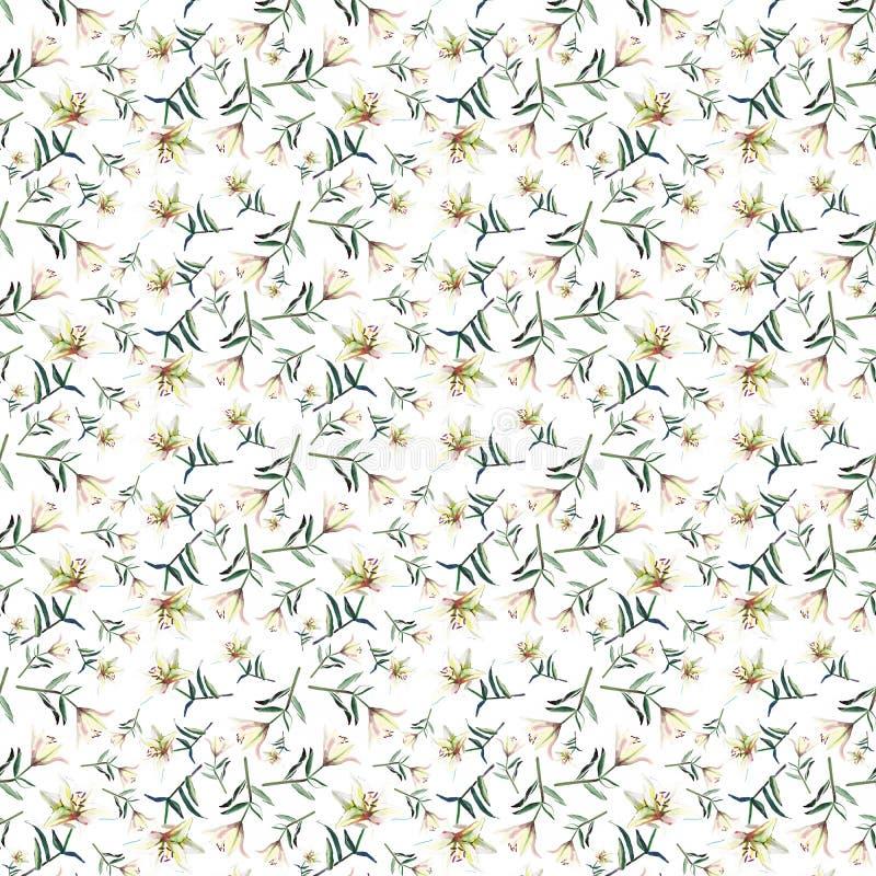 Dome mola macia o teste padrão bonito refinado da aquarela pulverulento bege branca dos lírios ilustração royalty free