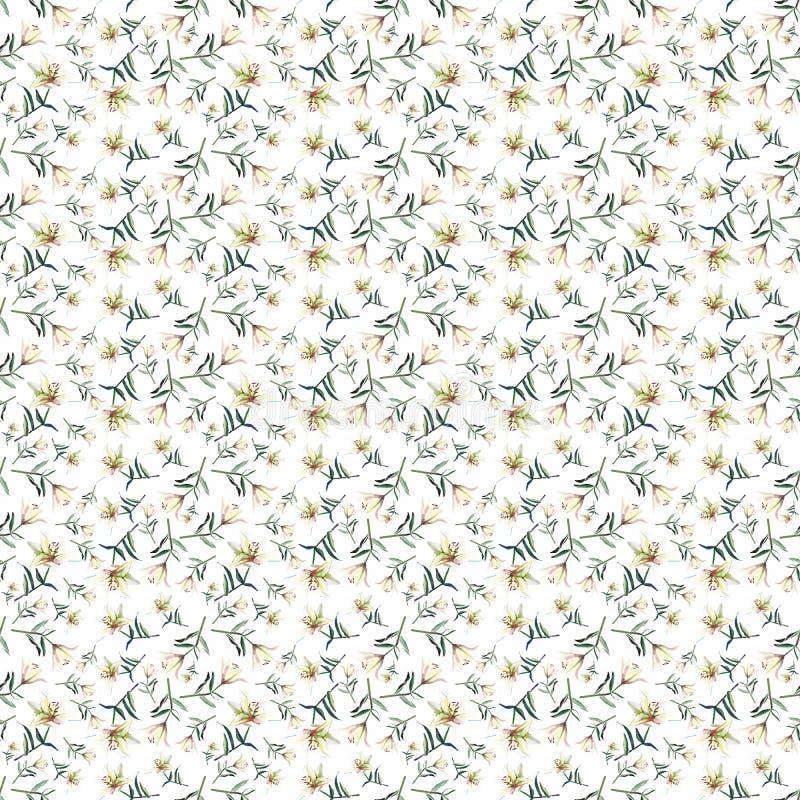 Dome mola macia o teste padrão bonito refinado da aquarela pulverulento bege branca dos lírios ilustração do vetor