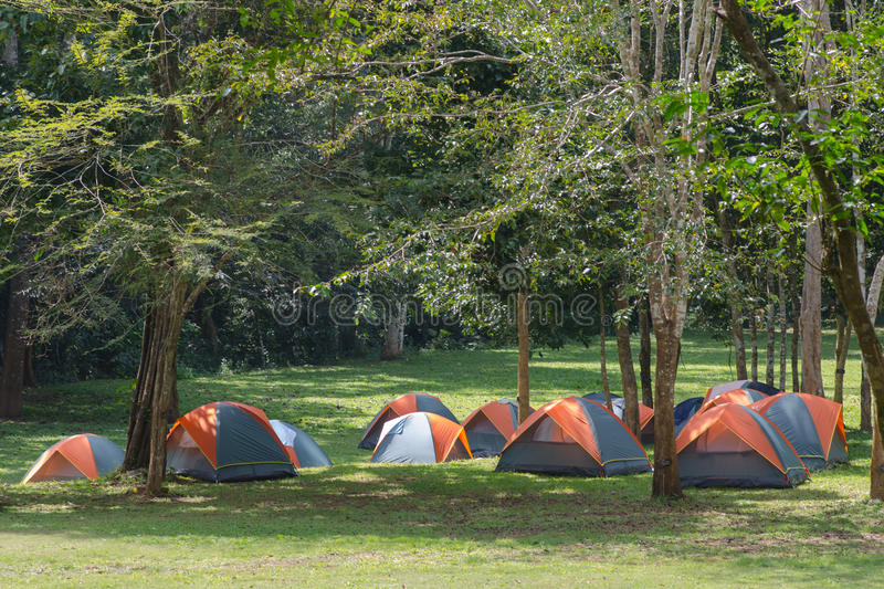 Download Dome Tent Camping Royalty Free Stock Images - Image: 31886639