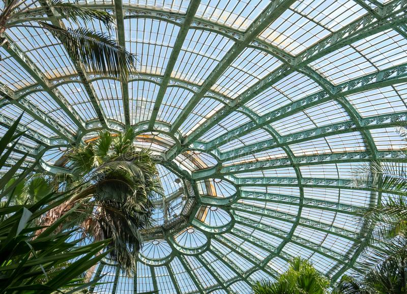 The domed ceiling of the Winter Garden, part of the Royal Greenhouses at Laeken, Brussels, Belgium. The greenhouse houses palms, ferns and exotic flowering stock image