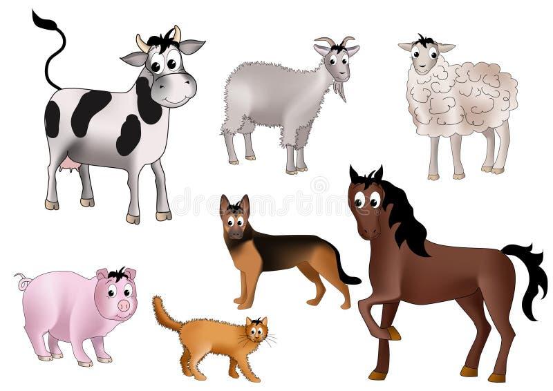 Domestic Animals Royalty Free Stock Photo