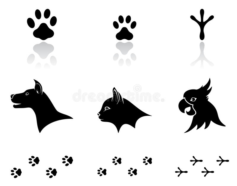 Download Domestic animals stock vector. Image of footprint, animal - 28802646