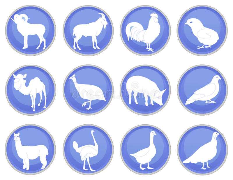 Domestic Animals Icon Set 2 Royalty Free Stock Images