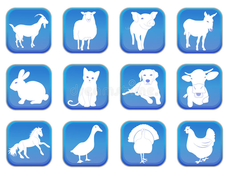 Download Domestic animals 1 stock vector. Illustration of animal - 30369622