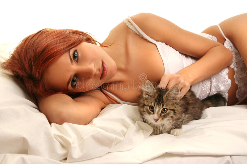 Domestic cat. Beautiful young woman with cat stock photo