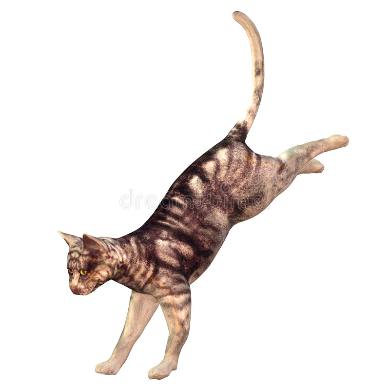 Download Domestic Cat stock illustration. Image of jumping, wild - 4656482