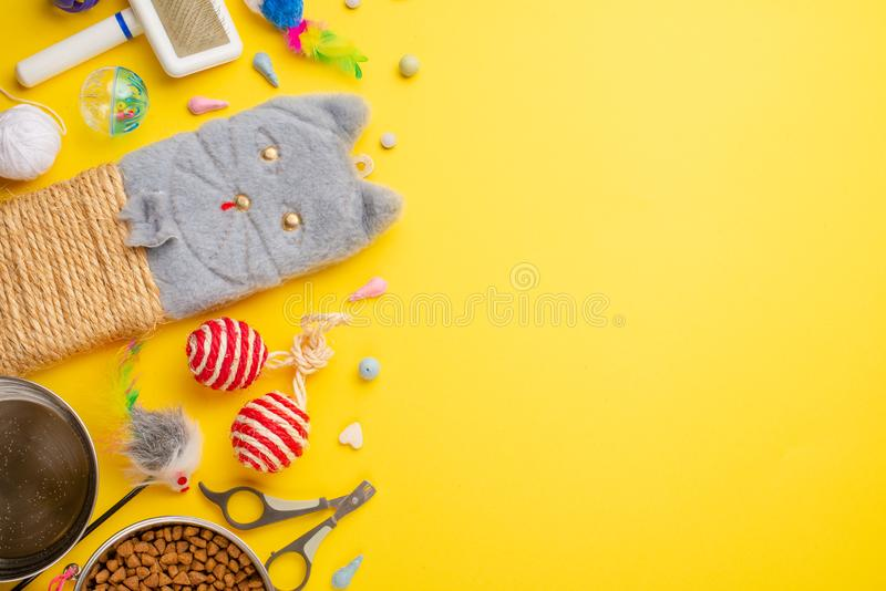 Domestic and cute animals, pets, cute cats, food and accessories for cat`s life, Flat lay, space for a dresser, on a yellow. Background. Zoomarket, pet shop royalty free stock image