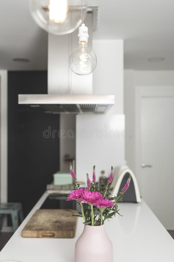 Domestic kitchen still scene with pink decoration plant and served breakfast stock photos