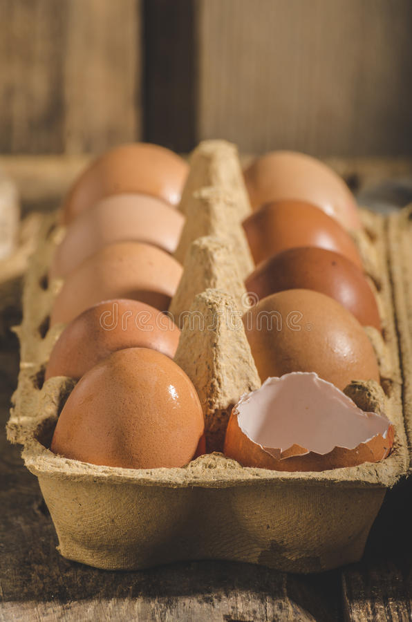 Domestic organic eggs. Product photo, place for your advertisment or text stock photo