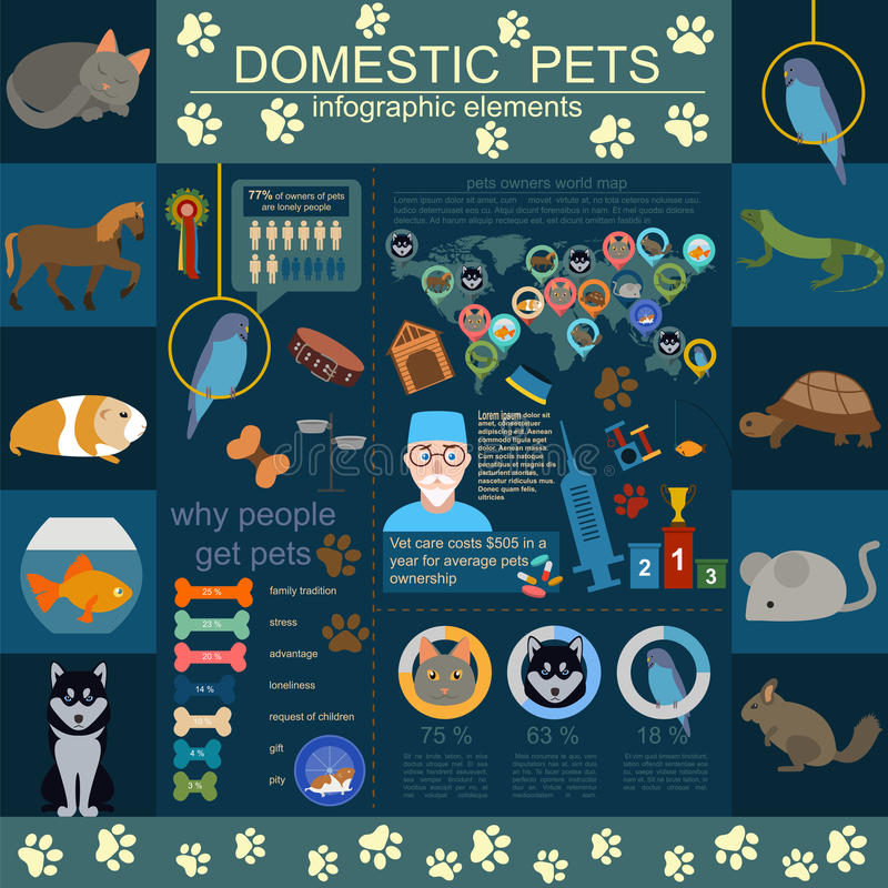 Domestic pets infographic elements, helthcare, vet stock illustration