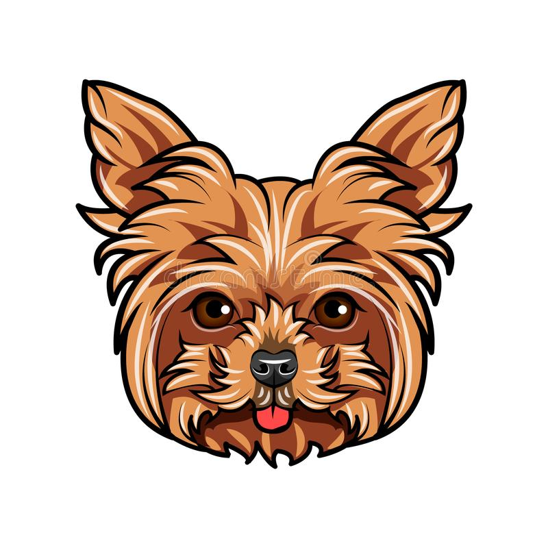 Domestic Yorkshire terrier Dog portrait. Cute head of Yorkshire Terrier on white background. Dog head, face, muzzle. Vector. Domestic Yorkshire terrier Dog stock illustration