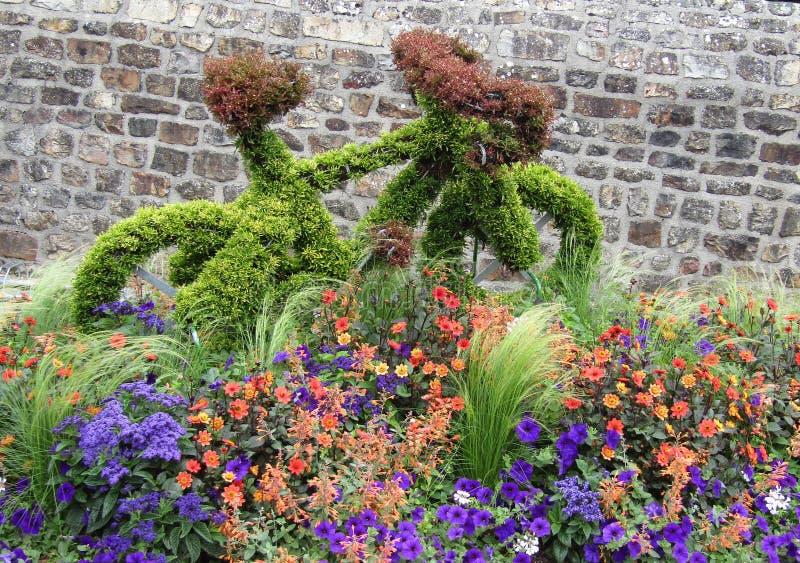 Domfront sztuka w roślinach zdjęcia royalty free