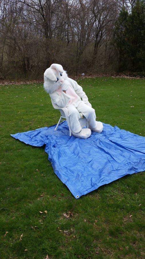 Domingo de Páscoa com coelho do partido fotografia de stock