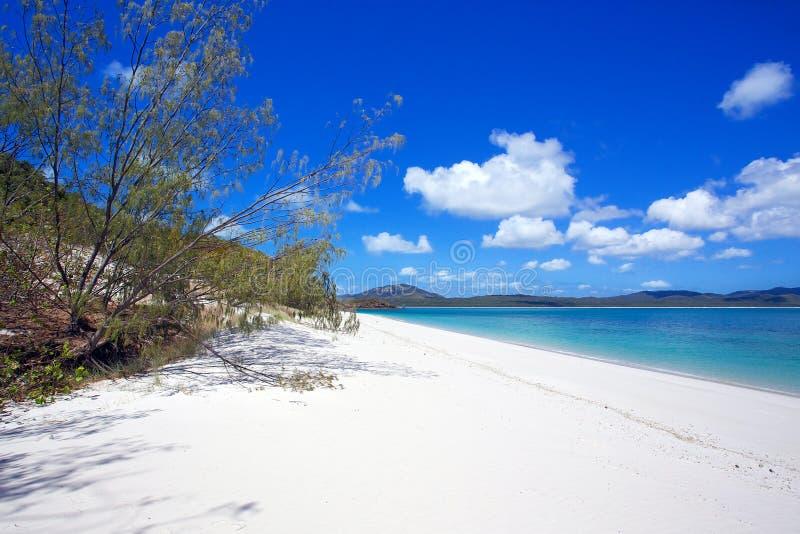Domingos de Pentecostes da praia de Whitehaven foto de stock royalty free