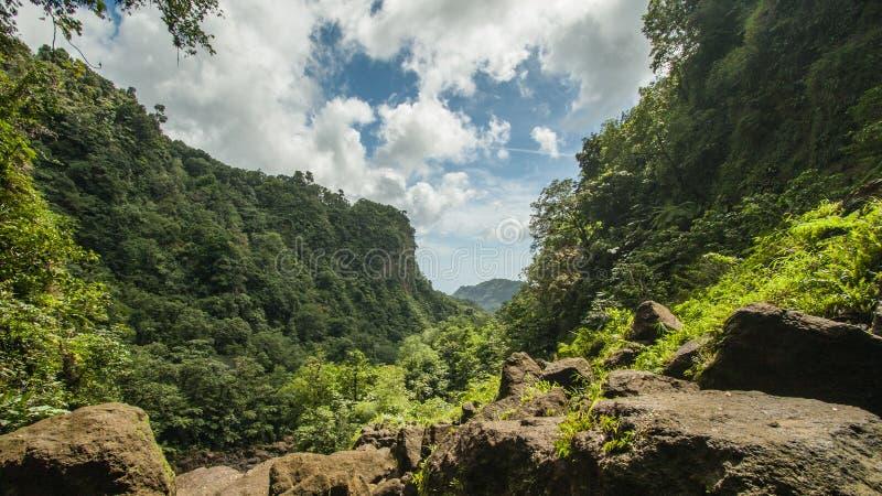 Dominica arkivbilder