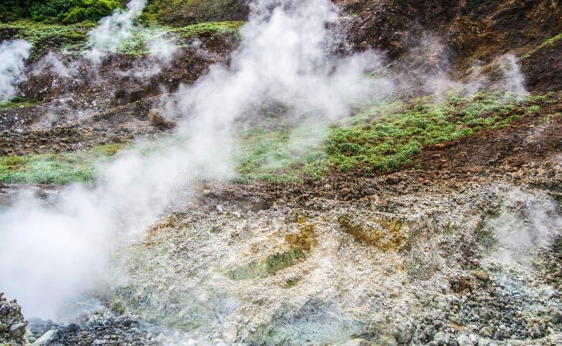 Dominica Boiling Lake Hike Landscape arkivbild