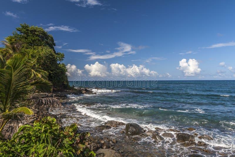 Dominica Coast in de zomer stock foto