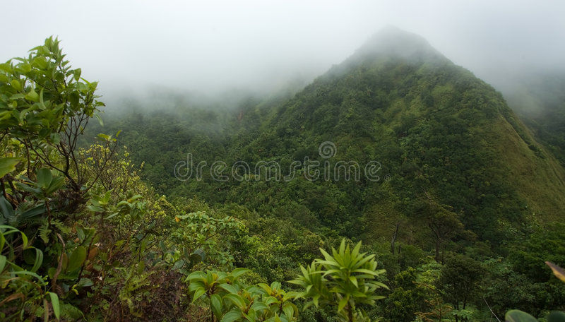 Dominica Exploraties royalty-vrije stock foto