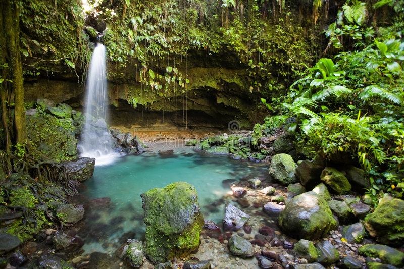 Dominica Explorations royalty free stock image