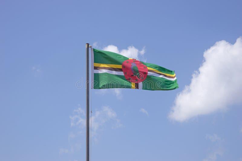 dominica flagga royaltyfria bilder