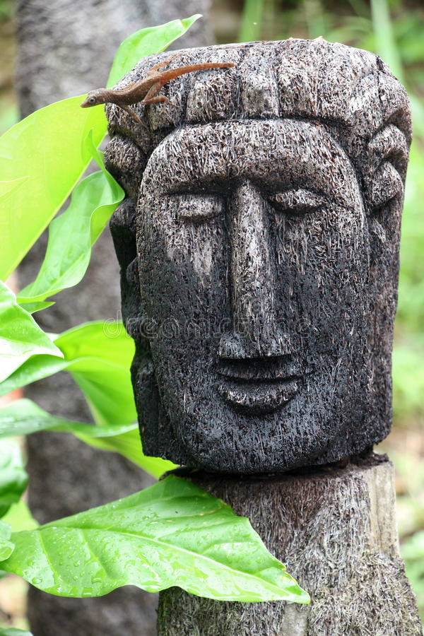 Dominica Head royaltyfri fotografi